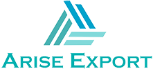 Arise Export logo